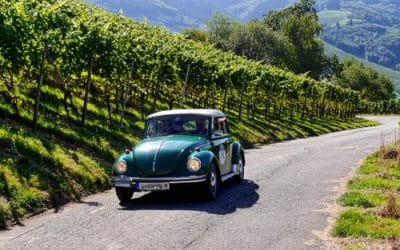 France : La route des crêtes des Vosges et la route des vins d'Alsace